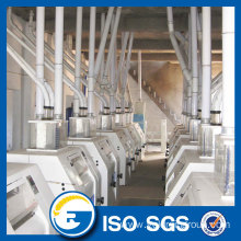 Maize flour processing line